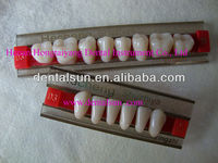 Artificial Acrylic Teeth For Dentures/dental Synthetic Polymer ...