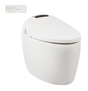 Fancy type S-trap automatic cleaning sanitary WC intelligent toilet