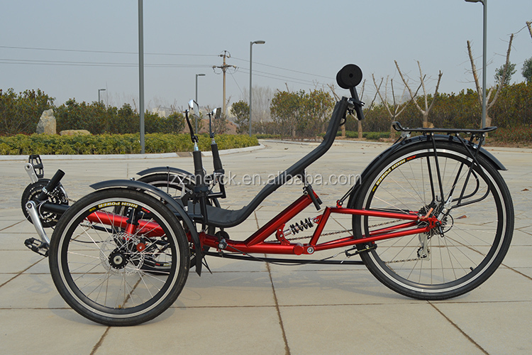 Any 3 wheel recumbent style adult bike