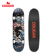 China manufacturer wholesale high quality maple decks skateboard