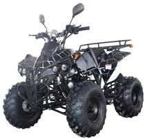 <span class=keywords><strong>Quad</strong></span> chine pas cher 125cc atv 4x4