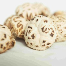 Top quality chinese dried mushroom market prices for mushroom
