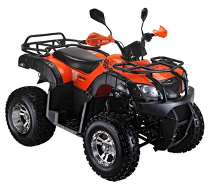 250cc EEC utility ATV with New INTEGRATED LED Turning Lights (TKA250E-4B)