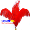 Wholesale New Style Feather, Feather Ostrich Plumes, different colours Carnival Ostrich Feathers for Party Decorations