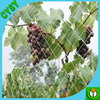 Factory directly supply vineyard green anti bird netting