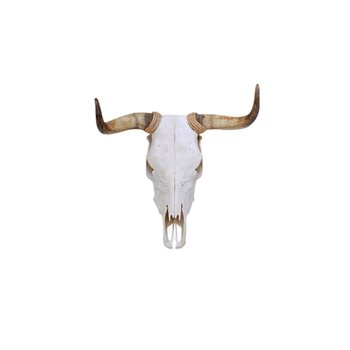 Polyresin Spanish Fighting Bull Skull Wall Hanging Decoration Buy Skull Wall Hanging Decoration Polyresin Bull Skull Wall Decor Spanish Fighting
