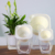 self watering flower pot indoor decorate garden plastic flower pot