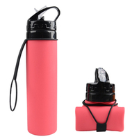 Hot Selling Custom Logo Pocket-Size Travel Collapsible Silicone Water Bottles For Sale With Free Sample BPA Free