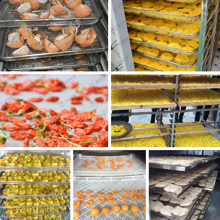 Guoxin Stainless steel dryer fruit mango banana dehydrator machine