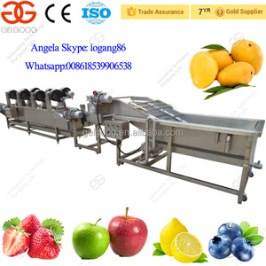 Automatic High Quality Vegetable and Fruit Washing Machine