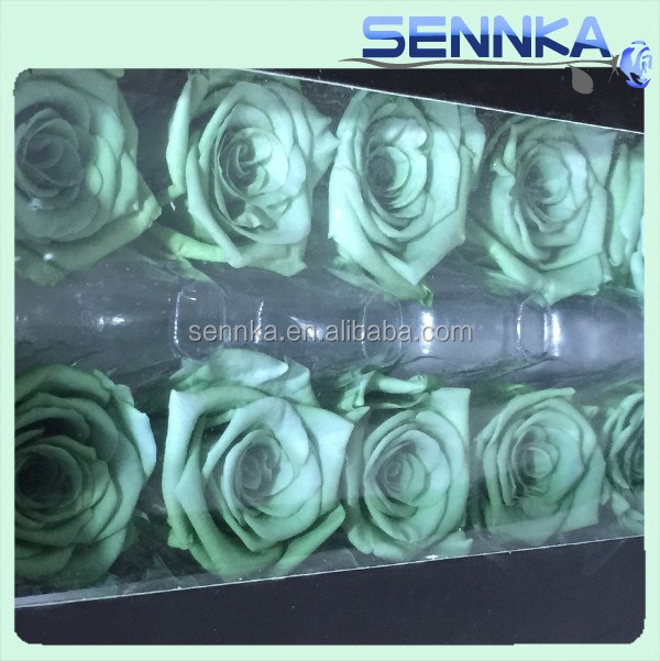 Brilliant Flower Tiffy Blue Preserved Roses Specializing in Weddings Events and Custom Flower Arrangements