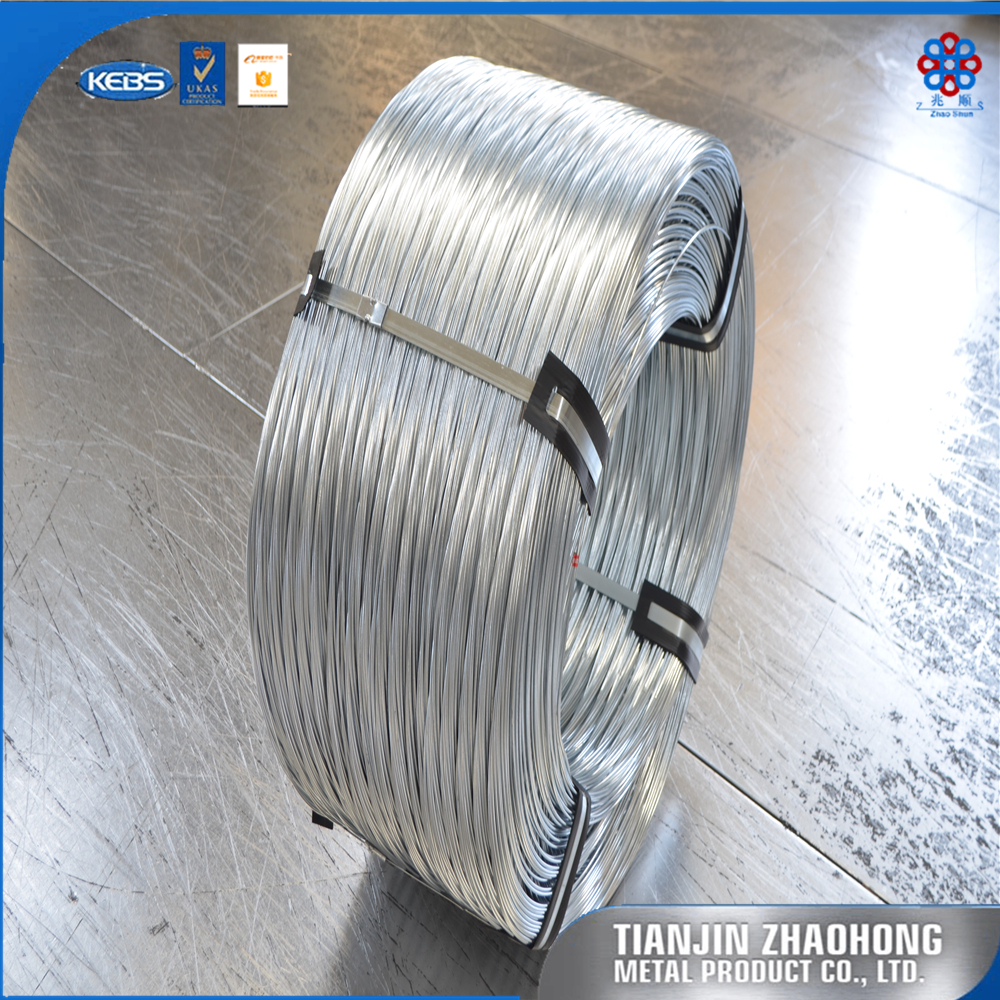 Electro Galvanized Steel Wire Rope, Electro Galvanized Steel Wire ...