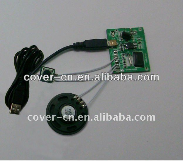 USB port Light sensor chip programmable sound modules for greeting cards and sound box/toy