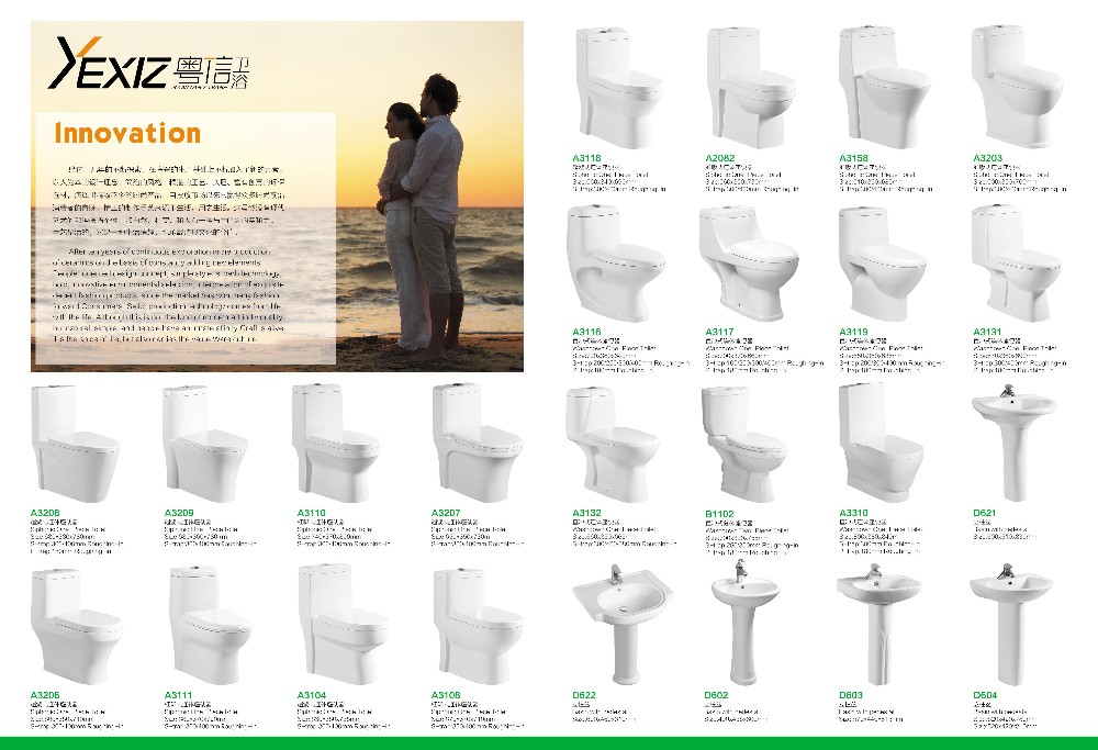 A3110 Gravity Flushing Toilet Wash Down One Piece closet / 250mm one piece toilet
