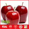 High quality fresh huaniu apple supplier from China