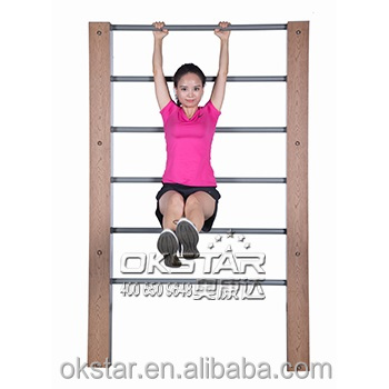 outdoor pull-up bars exercise equipment / Outdoor fitness ( OK Series)