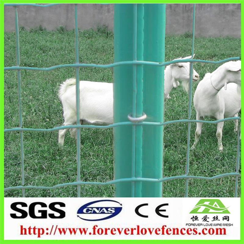 green fense holland fence fences for kids