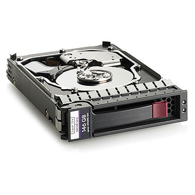 146GB hot-plug dual-port SAS hard disk drive - 10,000 RPM, 6Gb/sec transfer rate, 2.5-inch small form factor (SFF), Enterprise