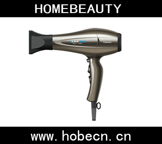 Painting Color Ionic Steam Hair Dryer With Diffuser