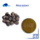 Natural high quality black maca extract powder maca extract wholesale