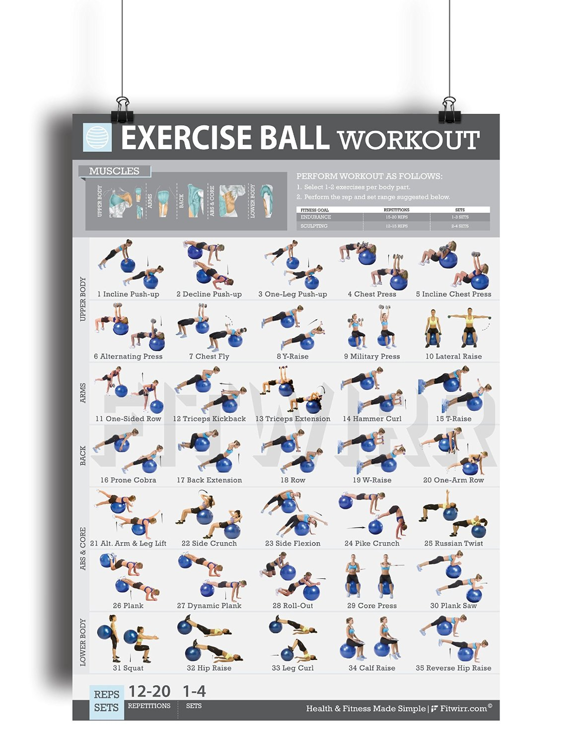 """Exercise Ball Workout Poster NOW LAMINATED - Total Body Workout -Fitness Ball Exercises - Body Toning, Sculpting - Home/Gym Workout - Core Training for Abs, Legs, and Butt - Rehabilitation 19""""X27"""""""