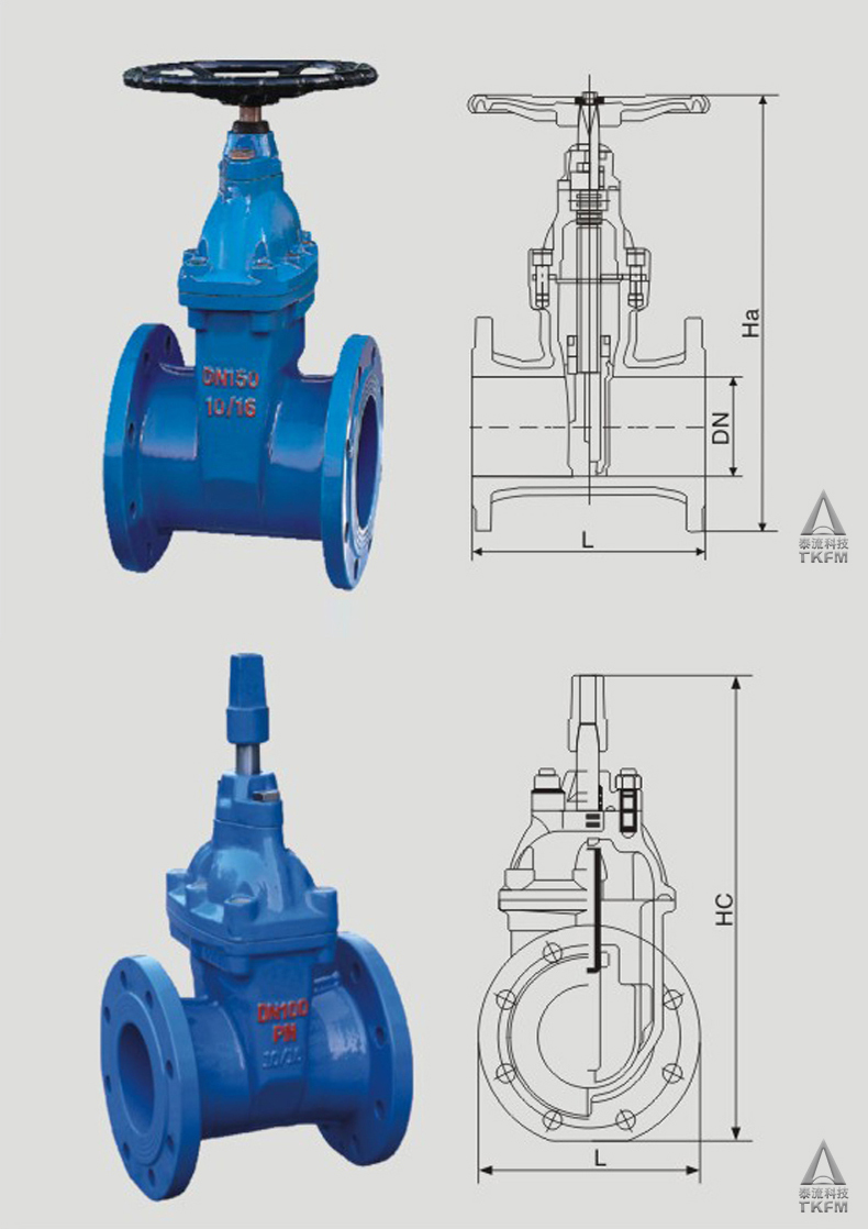 Tkfm Flange Connection 2 Inch Water Pipe Plain Gate Valve