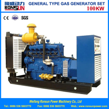 Water Cooled 100KW Biogas Gas Generator Set Powered by STEYR Engine