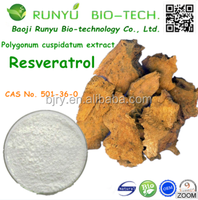 Pure Natural 98% trans resveratrol Giant Knotweed Extract Powder resveratrol 98%