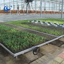 Hot Galvanized Greenhouse welded rolling benches/tables