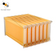 New product plastic bee frames 7 pcs flow hive frame