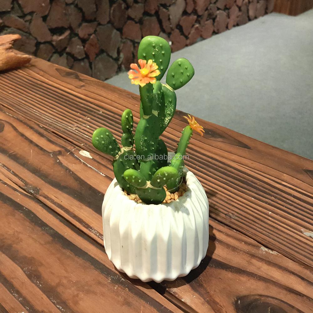 Indoor Flowering Cactus Wholesale, Indoor Flower Suppliers - Alibaba