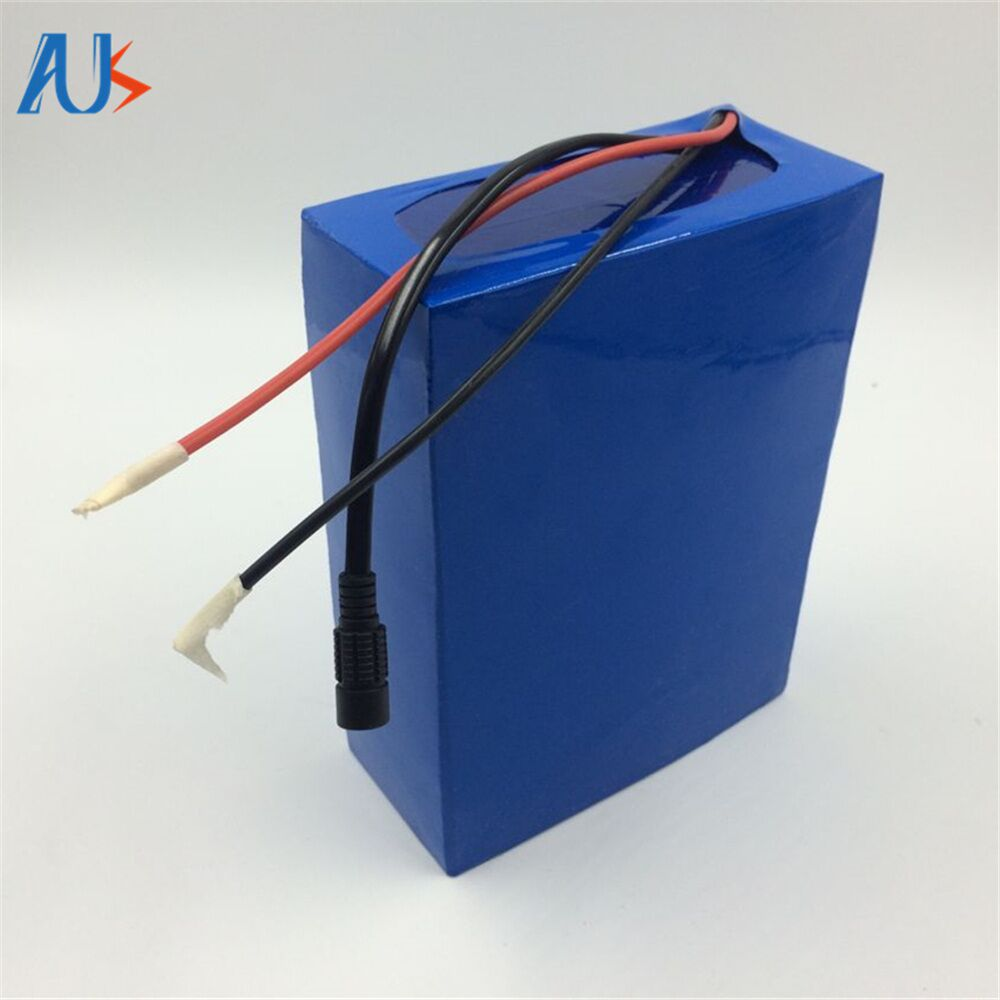 Lifepo4 Battery 48v 60ah ev Li-ion Battery Pack