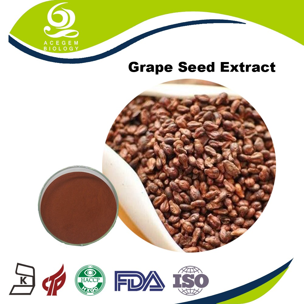 Free Samples Grapeseeds Extract 80% - 95% Proanthocyanidins OPC with Bodybuilding Supplements