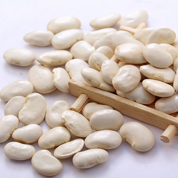 Bulk lima beans with high protein for sale