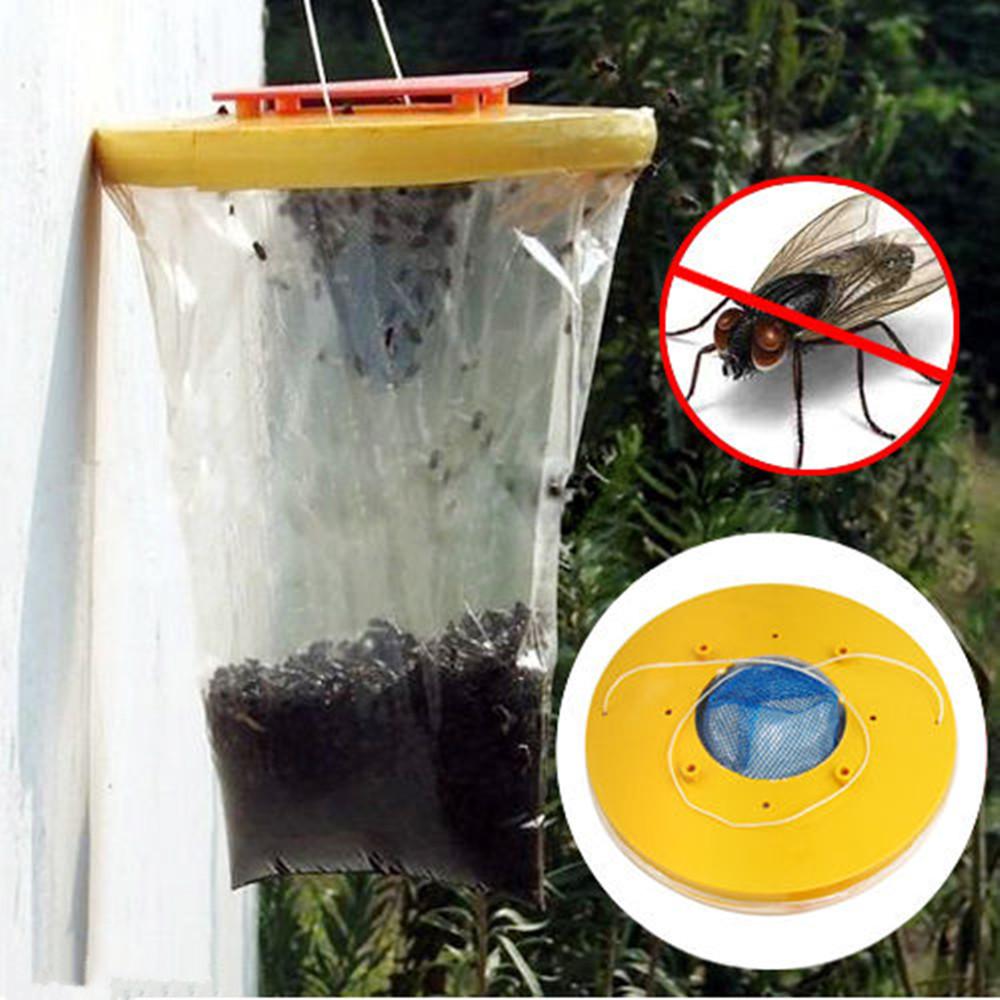 How To Kill Fruit Flies With Vinegar Kill Fire Ants With