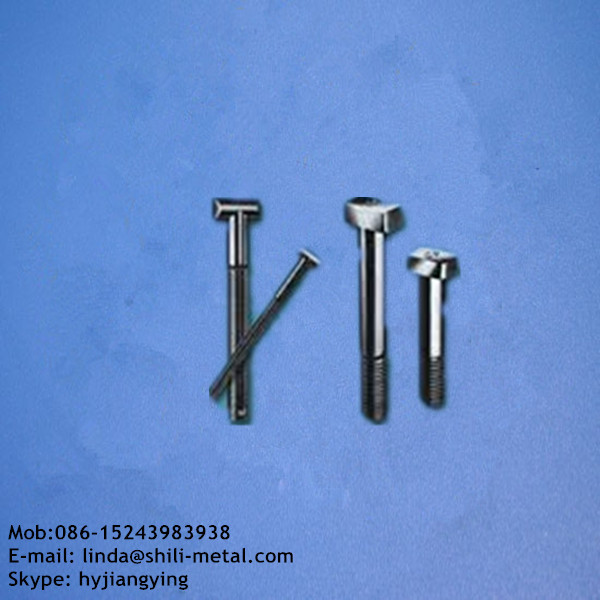 track bolts supplier railway bolts with nut washer t head bolts with high quality