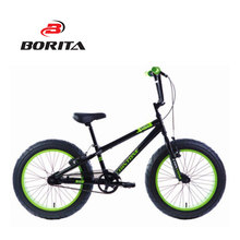 "Supply High Quality and Popular 20"" BMX Fat Bike"