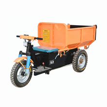 Hot Sales Electric Tricycle Three Wheel Covered Motorcycle For Sale With 1000W Motor