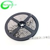 Distributor Wanted Waterproof 2835 LED Strip Light 60LEDS/M W/Y/R/G/B CE RoHS