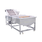 Large capacity onion carrot potato cleaning machine