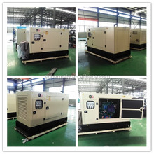key/auto start open/silent type 10 kva diesel generator 3 phase price power by Yangdong