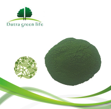 100% Pure Nature Organic Spirulina Powder Food Grade In Bulk