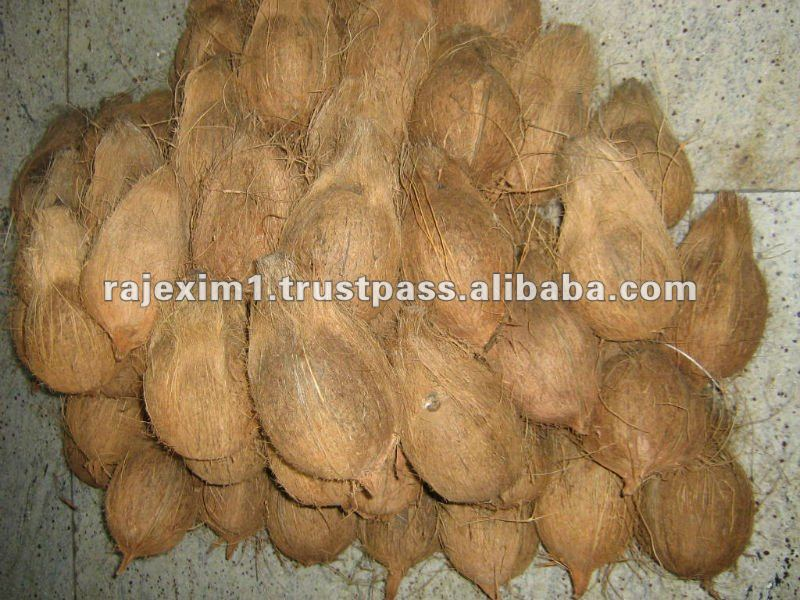 Indian semi husked matured coconut