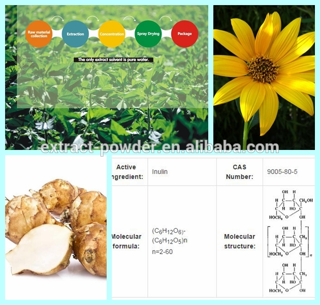 Chicory Root Extract Dietary Fiber Bulk Inulin