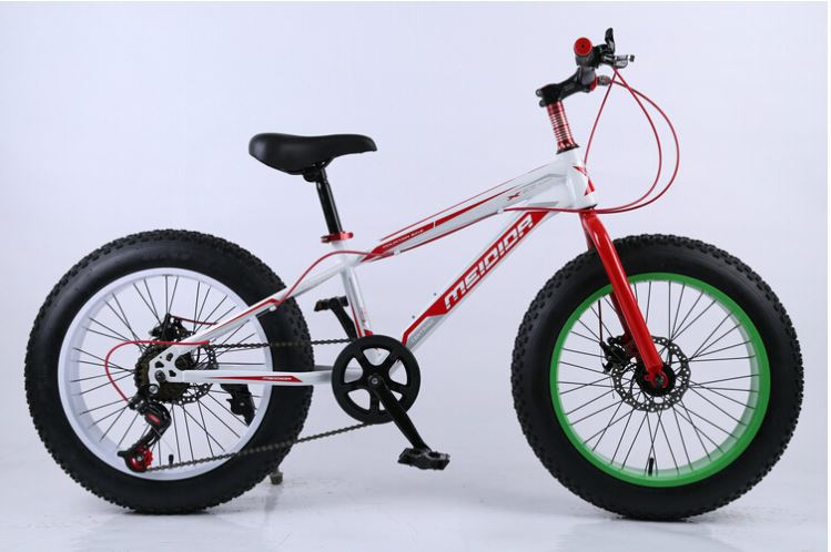 Competitive Price 26 Inch Wheel A Mountain Bike Snow Bicycle Oil Slick Bmx