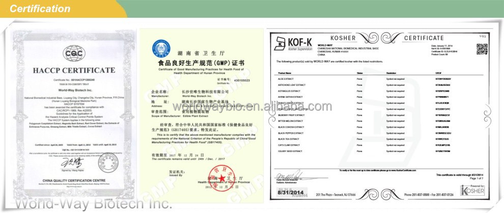 Free sample for test haccp fda kosher certified company pure free sample for test haccp fda kosher certified company pure natural catechin theobromine polyphenol cocoa extract yadclub Image collections
