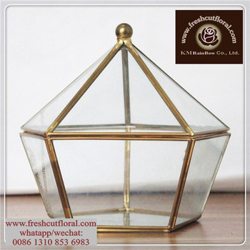 In Bulk Display Case For Small Objects Buy Glass Dome Glass