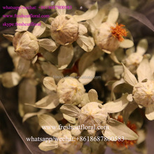 Wholesalers Distributors Directory Artificial Flower Arrangement Ideas Enjoy A Long Shelf-Life From China