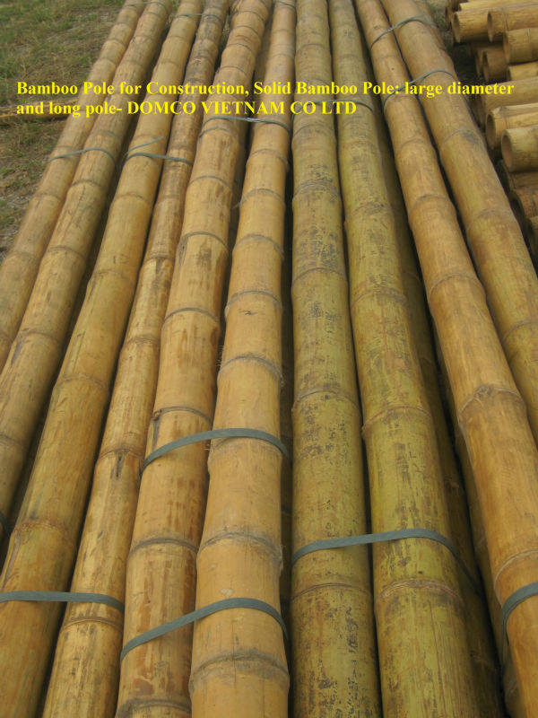 Nature Dry Straight Bamboo Pole Wholesale at cheap price/Natural Bamboo pole for sales/traight raw bamboo pole, for Construction