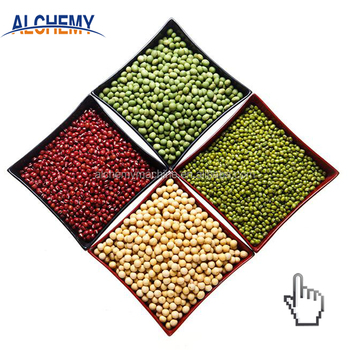 Red Dried Common Raw Kidney Beans Pinto Beans to Iran